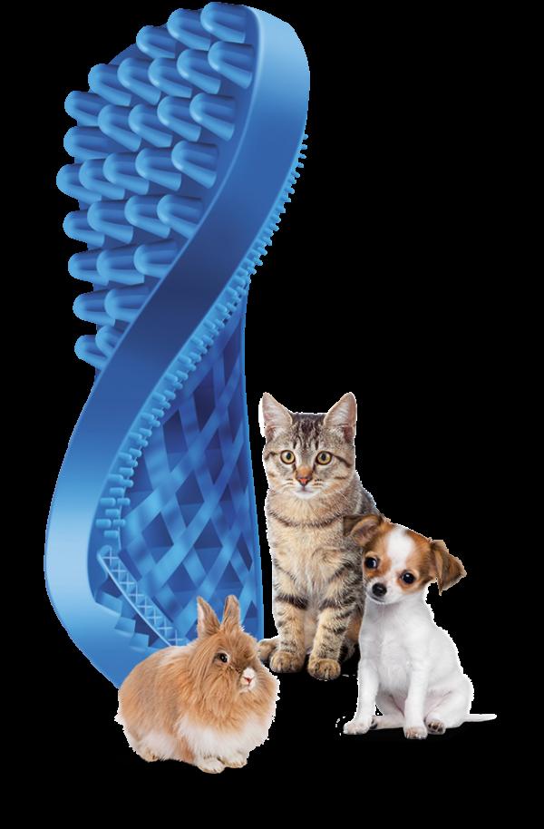 Pet + Me Blue Brush - Soft